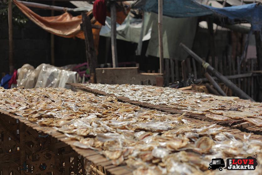 Tasha May_welovejakarta_We Love Jakarta_Rachel House_Kalibaru North Jakarta_Drying out fish in Kalibaru